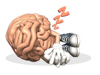 sleeping_brain